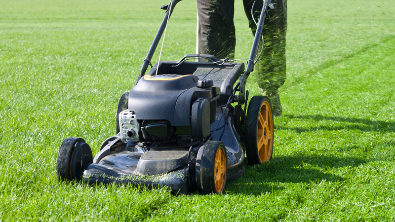 Hiring a Lawn services company