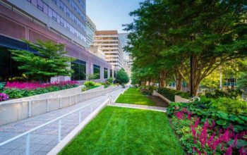 Hiring the Commercial Landscaping Services