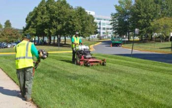 prominent commercial landscape contractor in your city